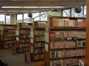 1.1207656000.what-a-manga-library-looks-likex